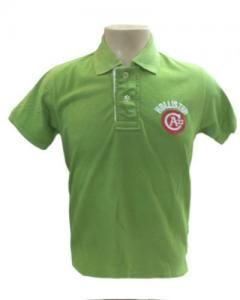 Camisa Hollister Polo Verde - PA22